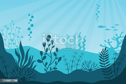 Marine life. Beautiful marine ecosystem and wildlife on bottom in blue ocean. Underwater sea fauna with coral reef, seaweed, plants and fishes silhouettes. Undersea world vector illustration.