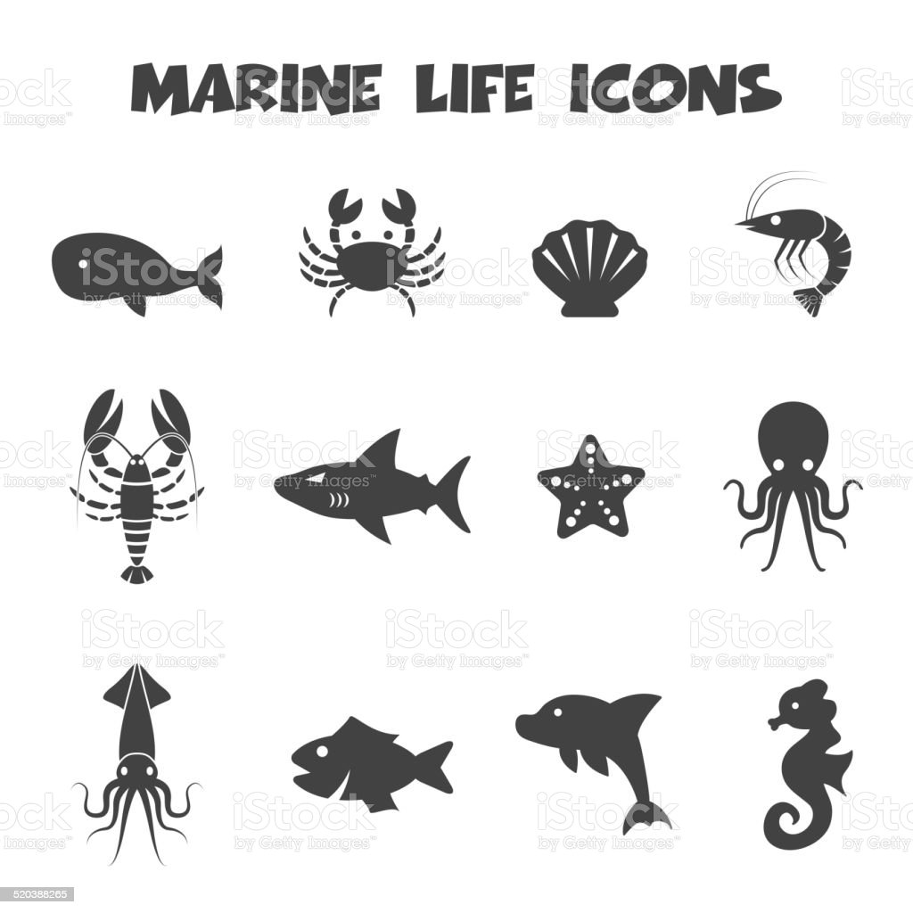 marine life icons vector art illustration
