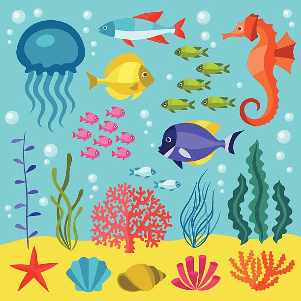 illustrazioni stock, clip art, cartoni animati e icone di tendenza di set di icone di vita marina, gli oggetti e gli animali del mare. - immerse in the stars