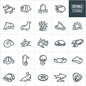 A set of marine life icons that include editable strokes or outlines using the EPS vector file. The icons include a sea turtle, tropical fish, octopus, dolphin, sea lion, seal, seaweed, shark, sun over ocean, sea urchin, starfish, coral, clams, lobster, snail, seashell, sea horse, jellyfish, sting ray, coastline, crab, whale, sand dollar and oysters.