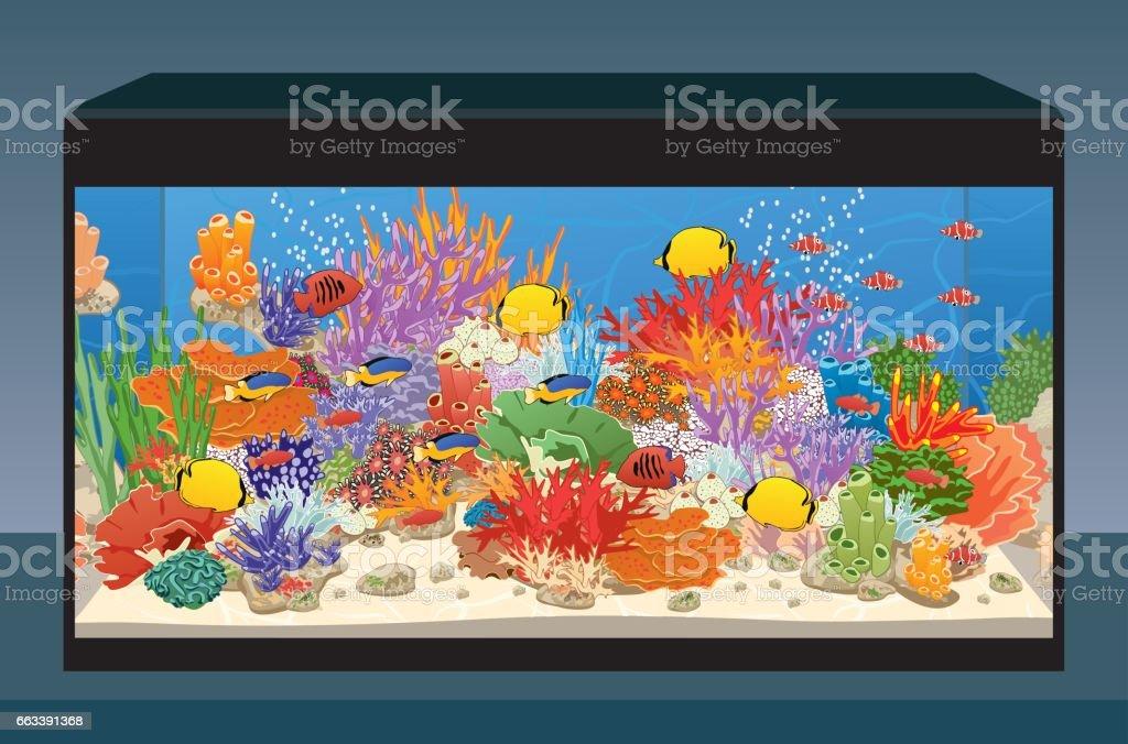 Marine reef saltwater aquarium 벡터 아트 일러스트
