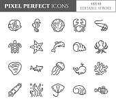Marine theme pixel perfect thin line icons. Set of elements of fish, shell, crab, shark, dolphin, turtle and other sea creatures related pictograms. Vector illustration. 48x48 pixels. Editable stroke.