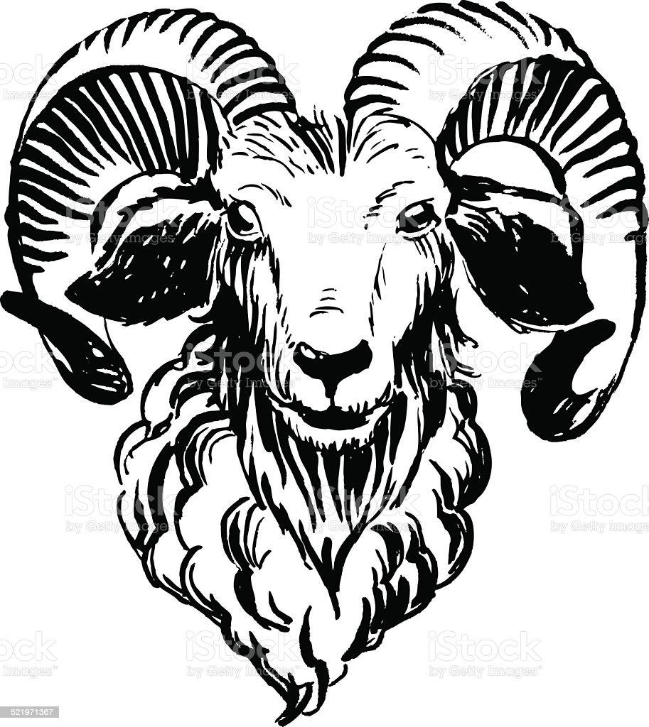 Marker hand-drawn farm animals: ram (sheep). vector art illustration
