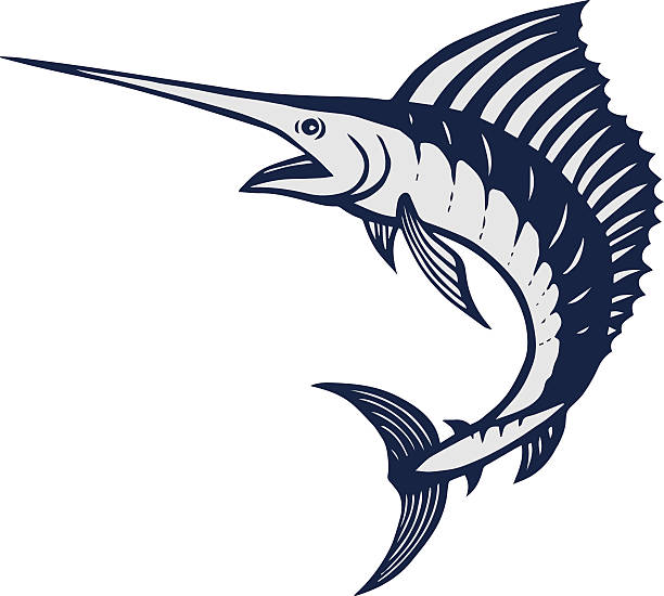 Royalty Free White Marlin Clip Art, Vector Images ...