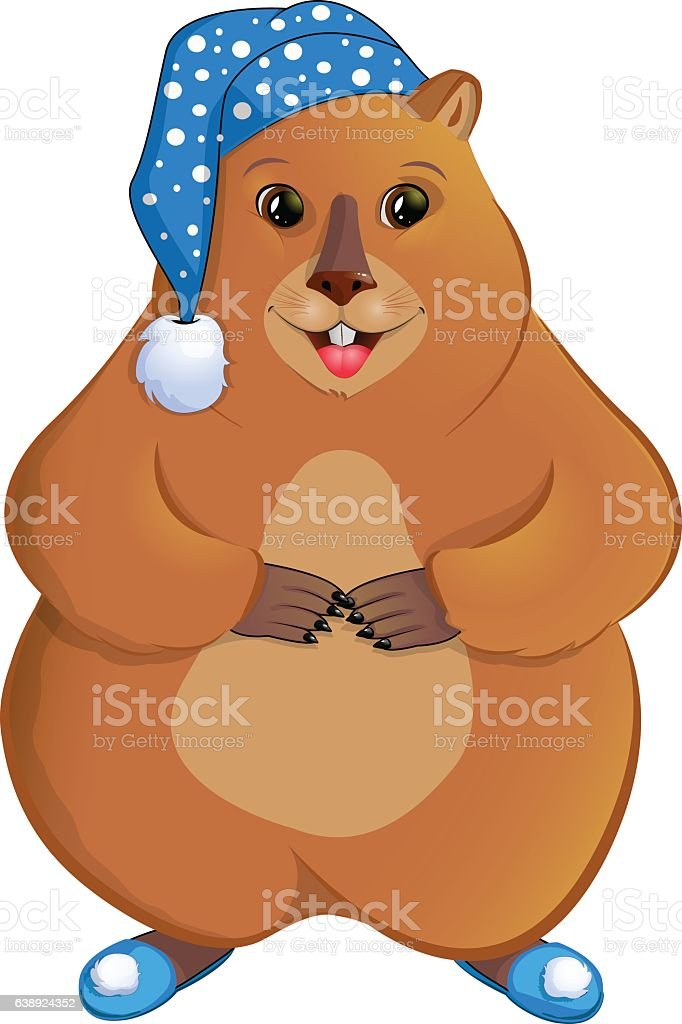 Marmot in the nightcap. - Illustration vectorielle