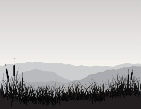 Serene marshland scene with cattails, grass, and mountains. EPS, Layered PSD, High-Resolution JPG included.