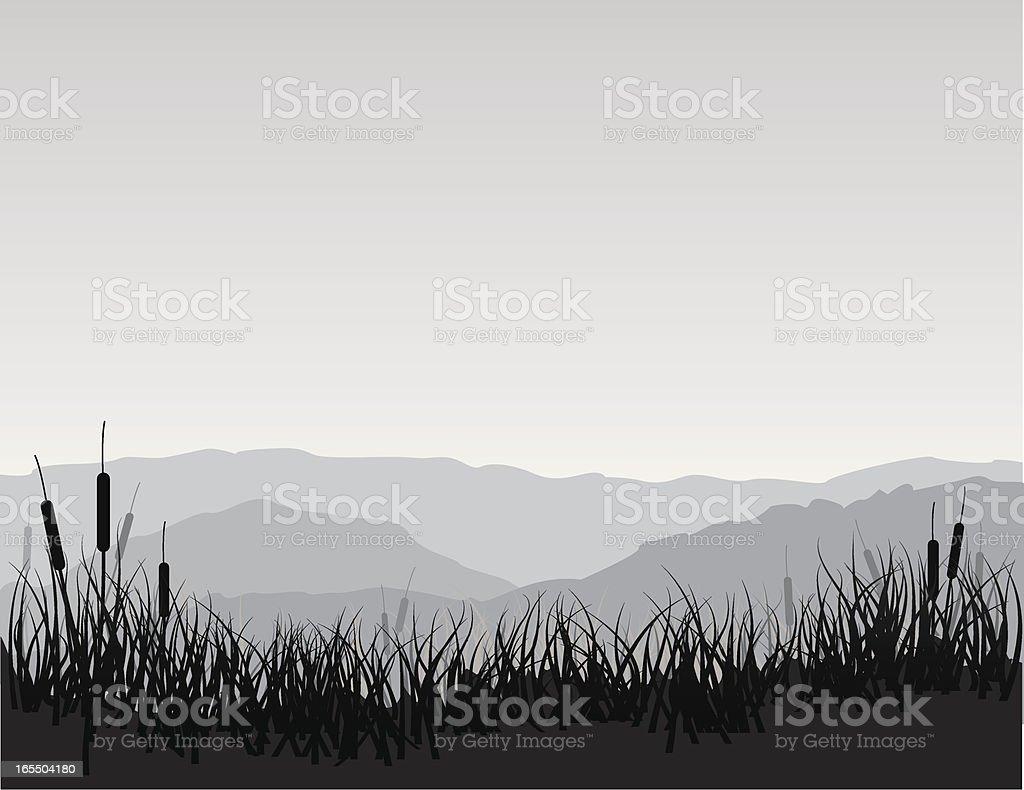 Marshland with Cattails vector art illustration