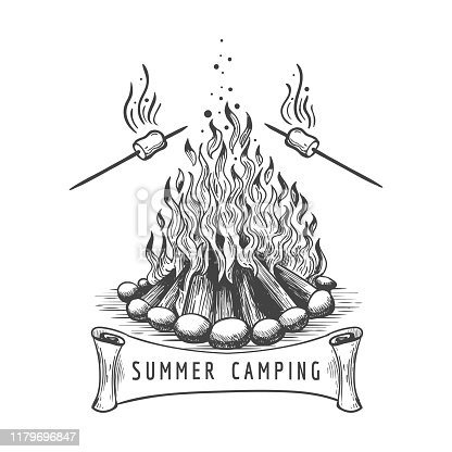 Marshmallow roasting. Marshmallows roast on campfire vector sketch, bonfire camping with frying sweet food hand drawn image