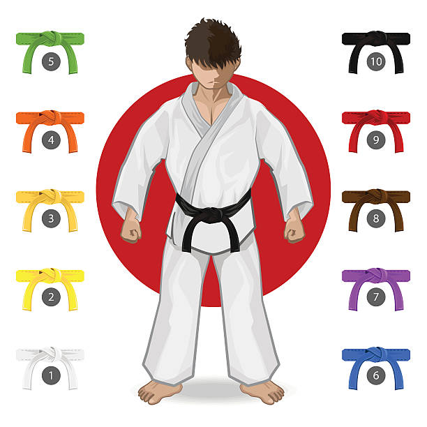 karate martial art belt rank system - martial arts stock illustrations