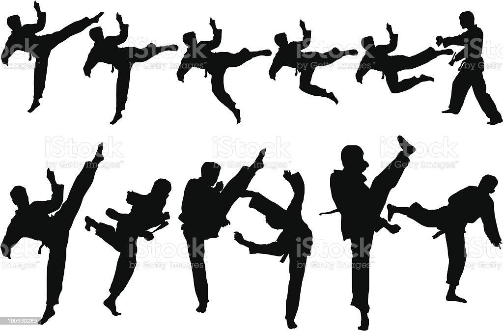 Martial art - Royalty-free Fitness vectorkunst