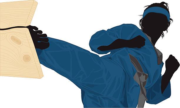Martial Arts illustration vector art illustration