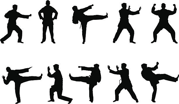 Best Kung Fu Illustrations, Royalty-Free Vector Graphics ...