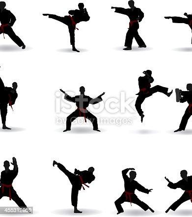 Martial arts Silhouette.