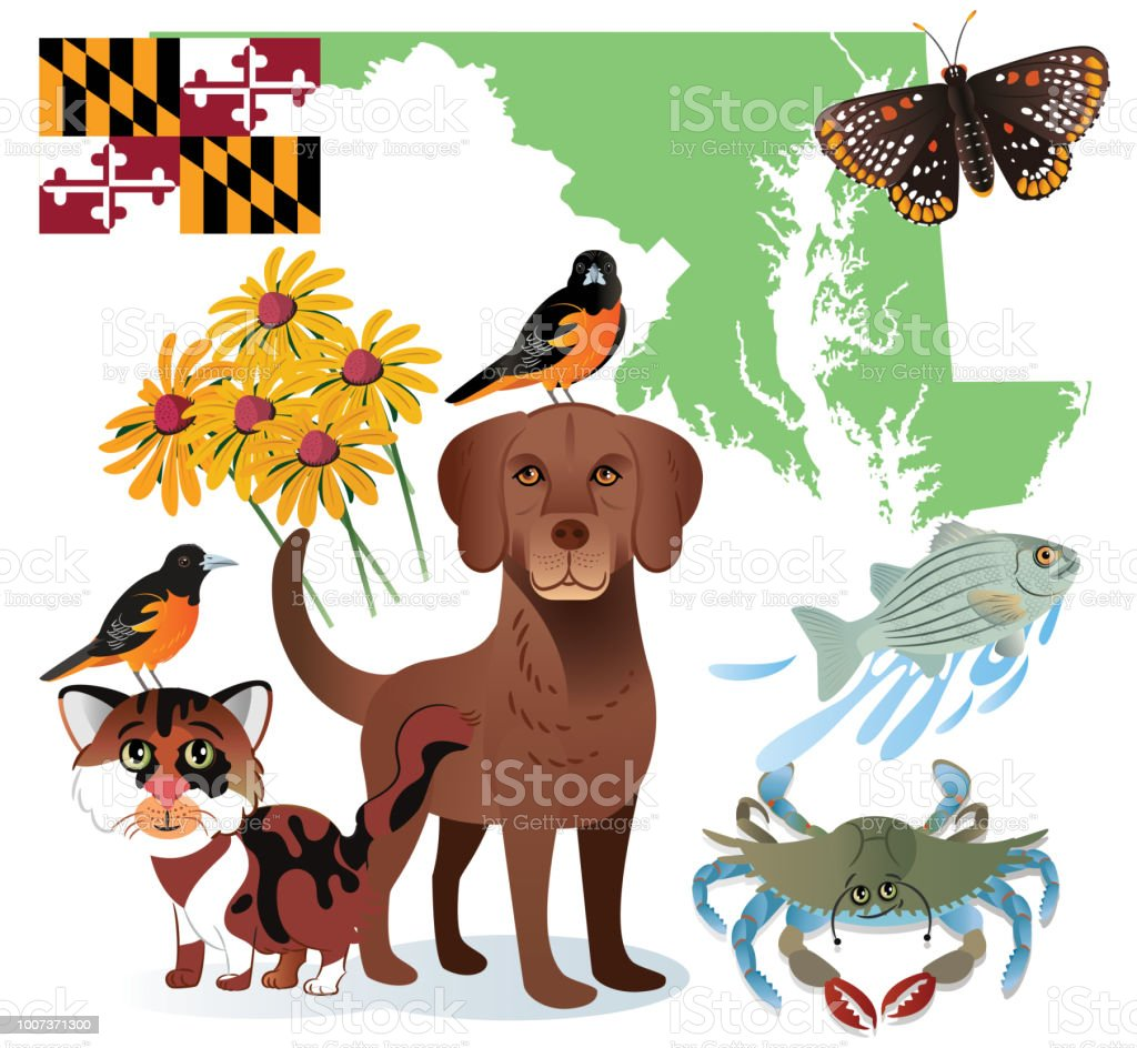 Maryland Symbols vector art illustration