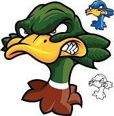 Adobe Illustrator cartoon of a mascot duck head. Download includes CS2 EPS, as well as high res RGB JPG file.
