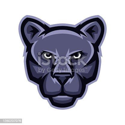 Mascot stylized cougar head. Illustration or icon of wild animal.