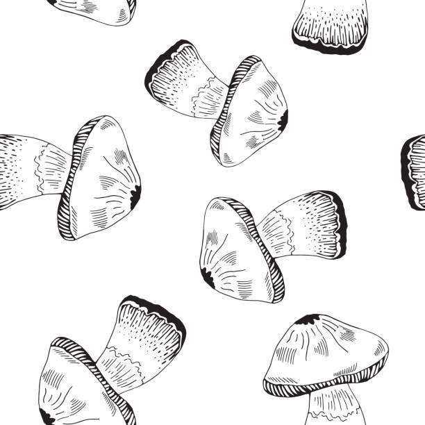 bildbanksillustrationer, clip art samt tecknat material och ikoner med mashroom mönster - höst plocka svamp
