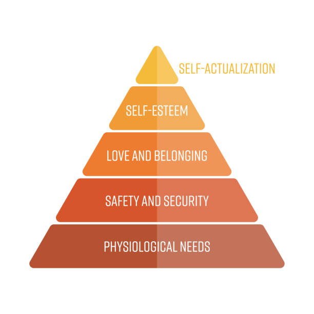 maslows hierarchy of needs represented as a pyramid with the most basic needs at the bottom. simple flat vector infographics - пирамида stock illustrations