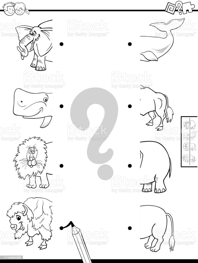 Ilustración De Mitades Del Partido De Los Animales Para