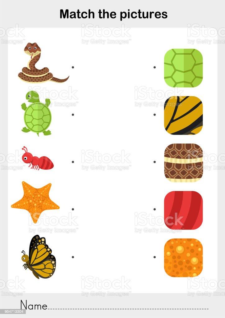 Mit übereinstimmen Sie Dem Bild Tierfell Und Haut Muster ...