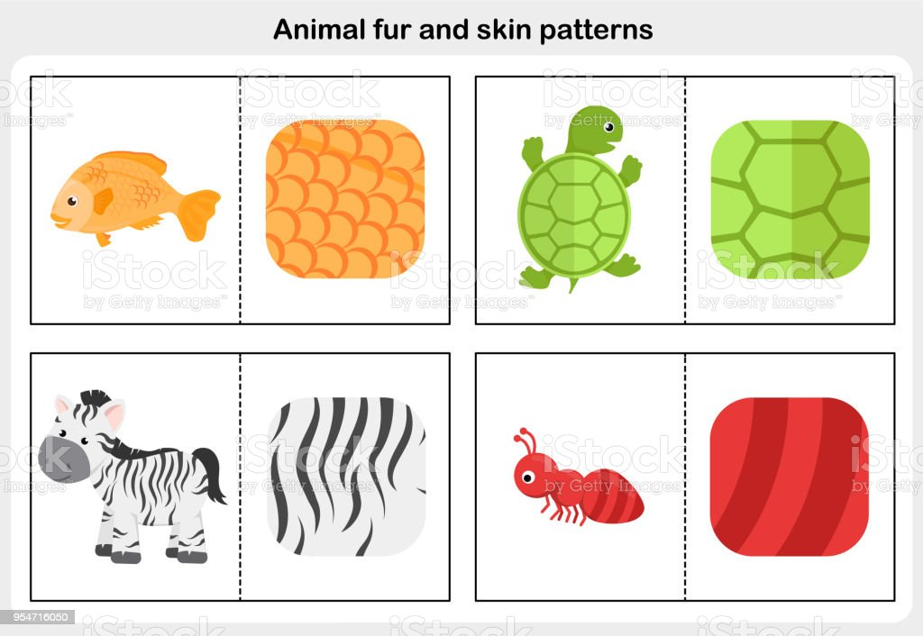 match the picture animal fur and skin pattern worksheet for education stock vector art more. Black Bedroom Furniture Sets. Home Design Ideas