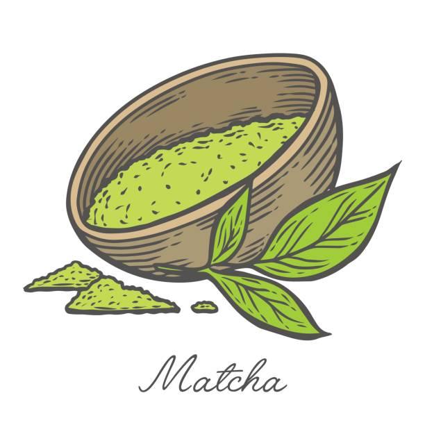 抹茶粉末緑茶葉の手描きイラストを彫刻ボウル カップ。日本、中国のお茶の健康ドリンクの成分。 - 抹茶点のイラスト素材/クリップアート素材/マンガ素材/アイコン素材