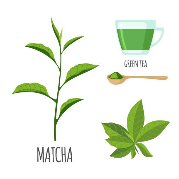 抹茶をフラット スタイルで紅茶のカップを設定します。 - 抹茶点のイラスト素材/クリップアート素材/マンガ素材/アイコン素材
