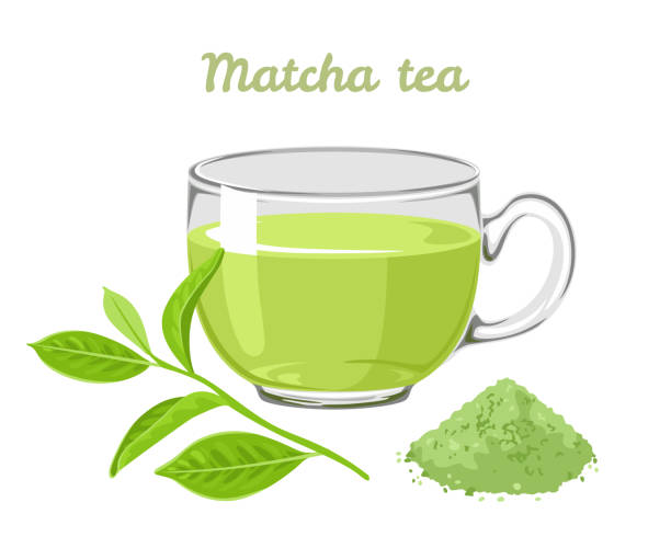 Matcha tea in glass cup isolated on white background. Vector illustration of green tea leaf, powder and fragrant drink in cartoon flat style. Matcha tea in glass cup isolated on white background. Vector illustration of green tea leaf, powder and fragrant drink in cartoon flat style. greentea stock illustrations