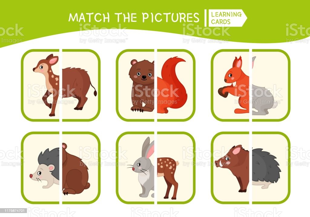Matching Children Educational Game Stock Illustration Download Image Now Istock