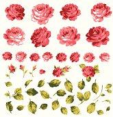 material of rose