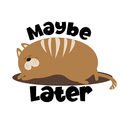 Maybe Later - text with cute sleeping  cat.