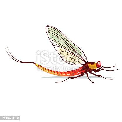 istock Mayfly vector illustration 528577310