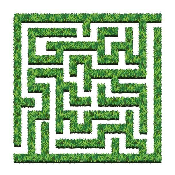 labyrinth von grünen büschen, labyrinthgarten. vektor-illustration. isoliert - labyrinthgarten stock-grafiken, -clipart, -cartoons und -symbole