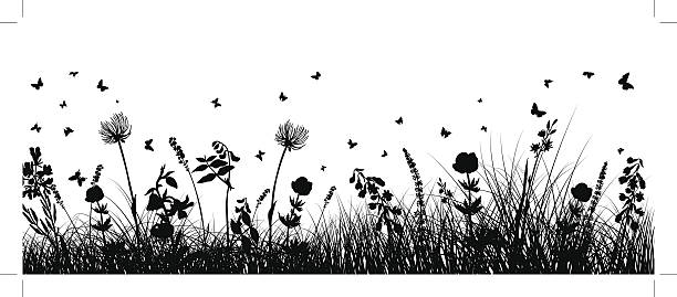 meadow background Summer meadow background. EPS 10 vector illustration without transparency and meshes. meadow stock illustrations