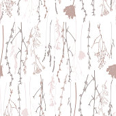 Vector seamless pattern with wild flowers, herbs and grasses.Thin delicate lines silhouettes of different plants - chicory, yarrow, dill, queen anne lace.