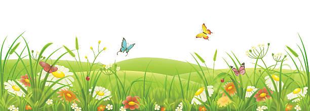 Prairie Fleurie Vectoriels Et Illustrations Libres De Droits Istock