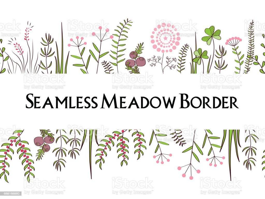 Meadow herbs seamless borders background illustration for posters meadow herbs seamless borders background illustration for posters greeting cards and other printing kristyandbryce Image collections