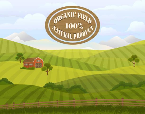 ilustraciones, imágenes clip art, dibujos animados e iconos de stock de meadow landscape. countryside. rural area. - straw field