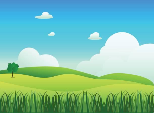 Paysage de prairie à l'avant-plan de l'herbe, illustration vectorielle. Champ vert et bleu ciel avec fond de nuage blanc - Illustration vectorielle