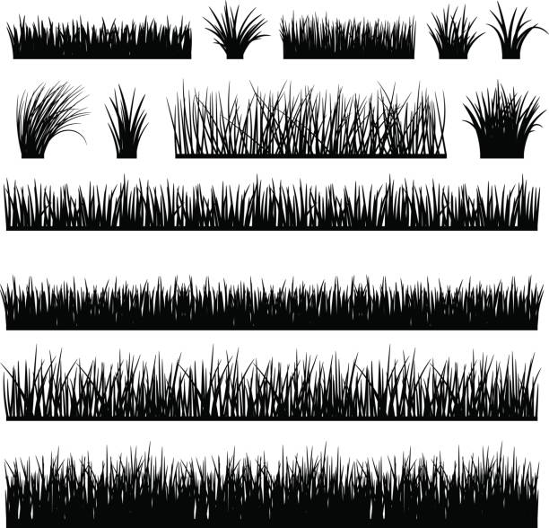 meadow silhouette set for horizontal banners - grass stock illustrations