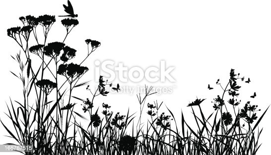 Meadow silhouette with butterfly and a dragonfly.
