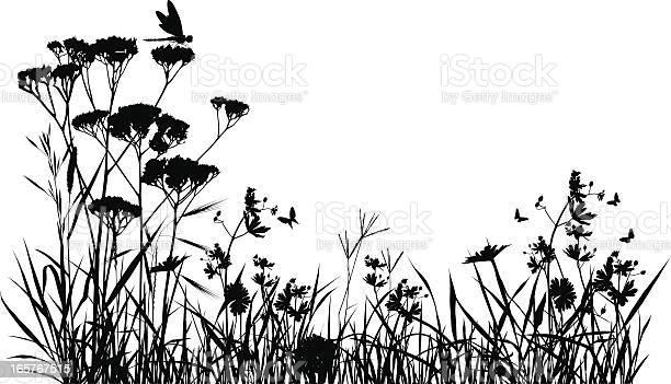 Meadow silhouette vector id165767515?b=1&k=6&m=165767515&s=612x612&h=i cvckkgu2ou o8pfi4gylirlekrws7djhhi3dnc4bm=