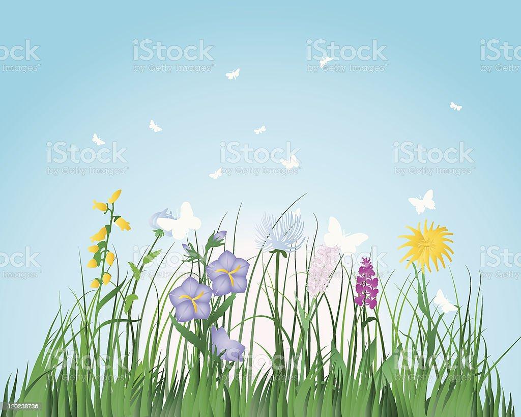 meadow royalty-free stock vector art