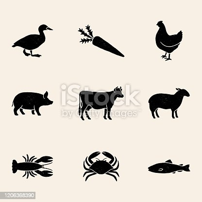 istock Meal Choice Icons 1206368390