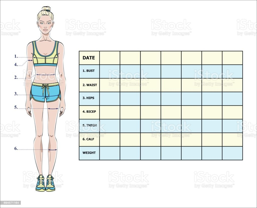 Measurement Chart Of Body Parameters For Sport And Diet Effect