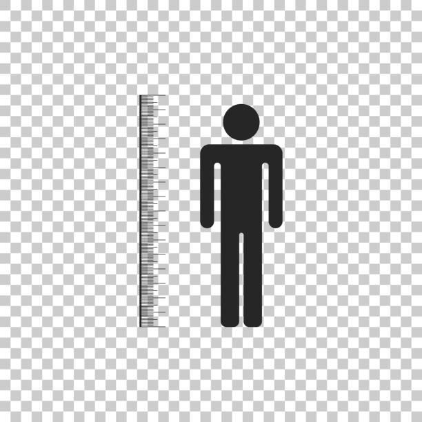 stockillustraties, clipart, cartoons en iconen met het meten van hoogte lichaam pictogram geïsoleerd op transparante achtergrond. platte ontwerp. vectorillustratie - lang lengte