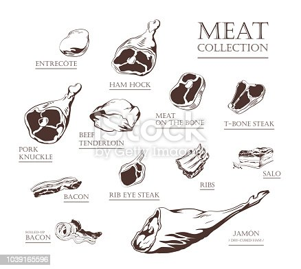 Collection of hand drawn vintage style food ingredients. Outline retro illustrations of meat, ham, pork, beef, lamb, bacon, ribs, steak, tenderloin. Vector icons, emblem and logo elements.