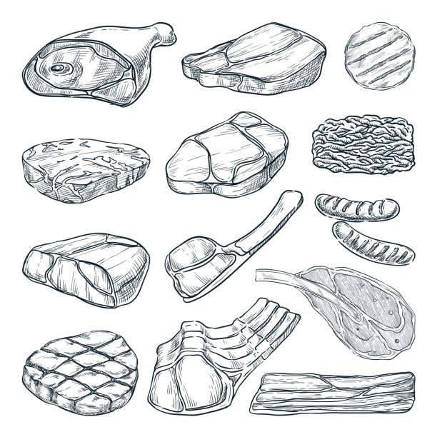 ilustrações de stock, clip art, desenhos animados e ícones de meat collection, sketch vector illustration. hand drawn food design elements. beef steak, ham, pork fillet, lamb - beef angus