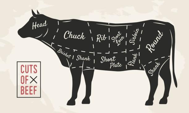 고기 인하. 쇠고기 인하입니다. 식당이 나 정육점이 게 빈티지 포스터입니다. 레트로 다이어그램입니다. 벡터 일러스트입니다. - 소고기 stock illustrations