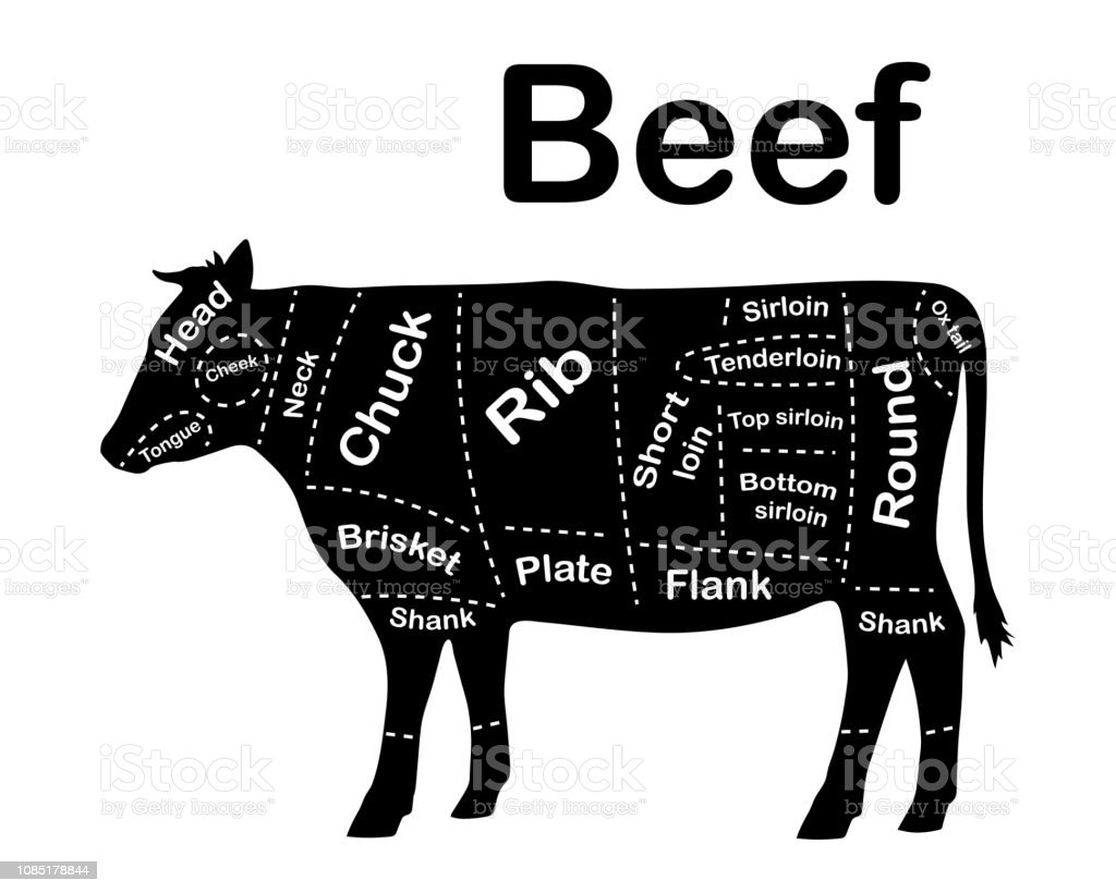 meat cuts - beef  diagrams for butcher shop  scheme of beef  animal  silhouette
